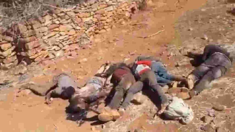 Leaked videos of the massacre of unarmed Tigrayans in Debre Abay by Ethiopian soldiers